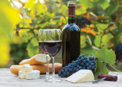 Full Day Private Winelands Tour- Cape Town