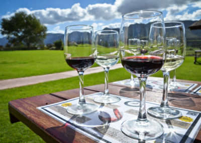 Full Day Private Winelands Tour- Stellenbosch