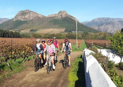 Full Day Helderberg Guided Cycling Tour